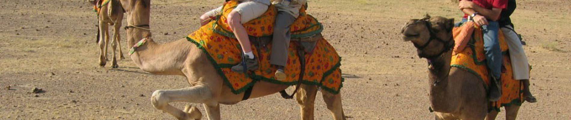 India: 19D Desert safari tours