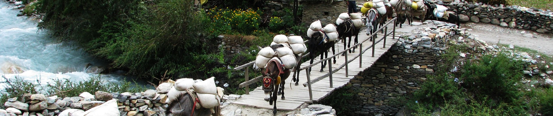 Nepal: 28d Upper Dolpo Trekking