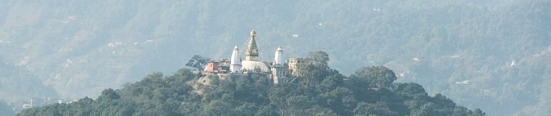 19d Total Experience Nepal