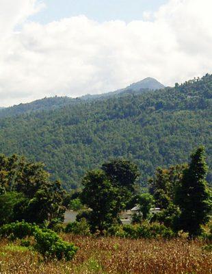 Nepal: 10d Kathmandu Valley Trekking
